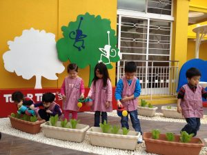 kowloon tong kindergarten